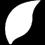 Logo-white-shikaku-2-01