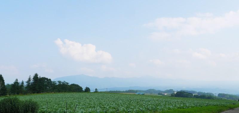 farm-s3